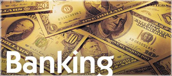شكل جديد [1]: البنوك التشاركية